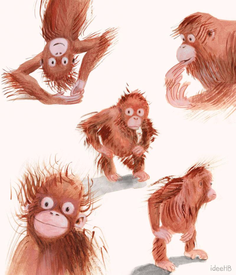 monkey orangutan illustration ideeHB