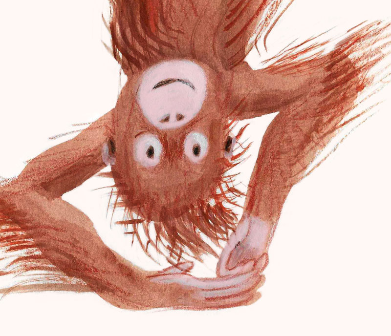 monkey upside down detail ideeHB